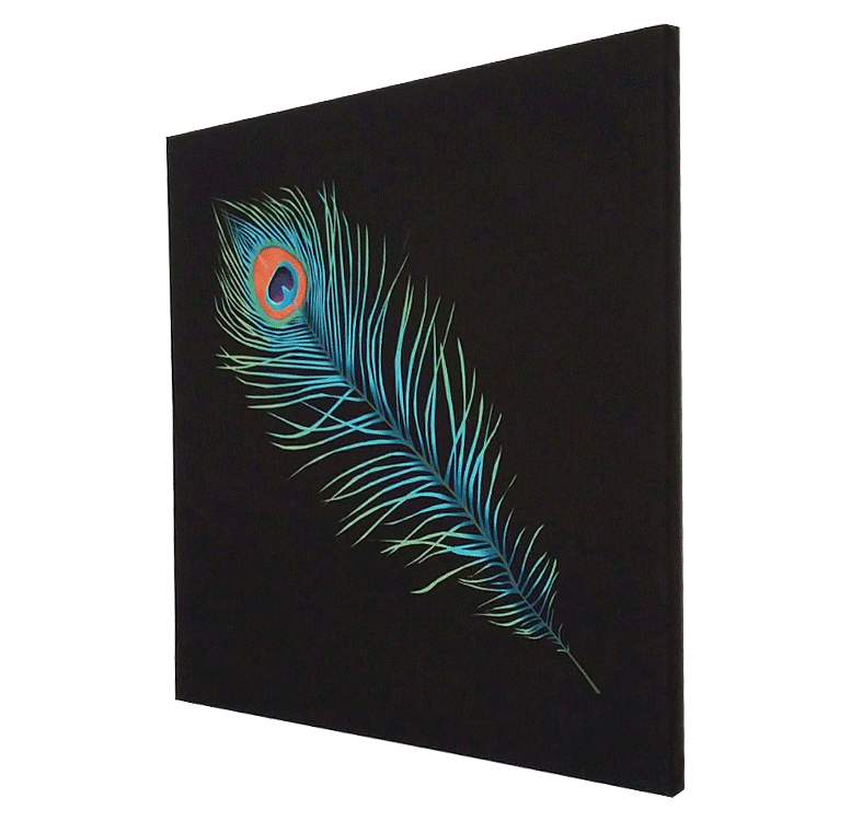 Peacock Feather Fine Art Print