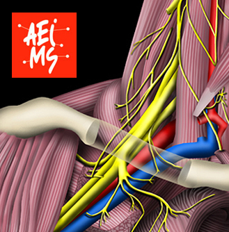 Proud to be a professional member of the Association of European Medical & Scientific Illustrators